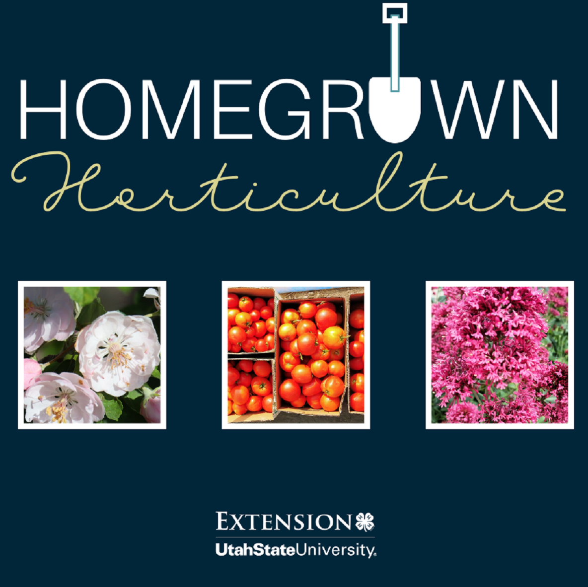 Homegrown Horticulture