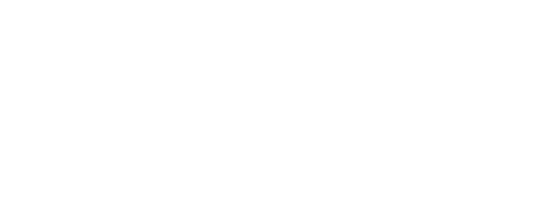 The WizeGuys
