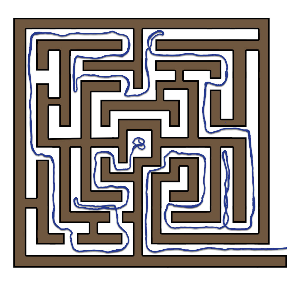 The Labyrinth and the Thread