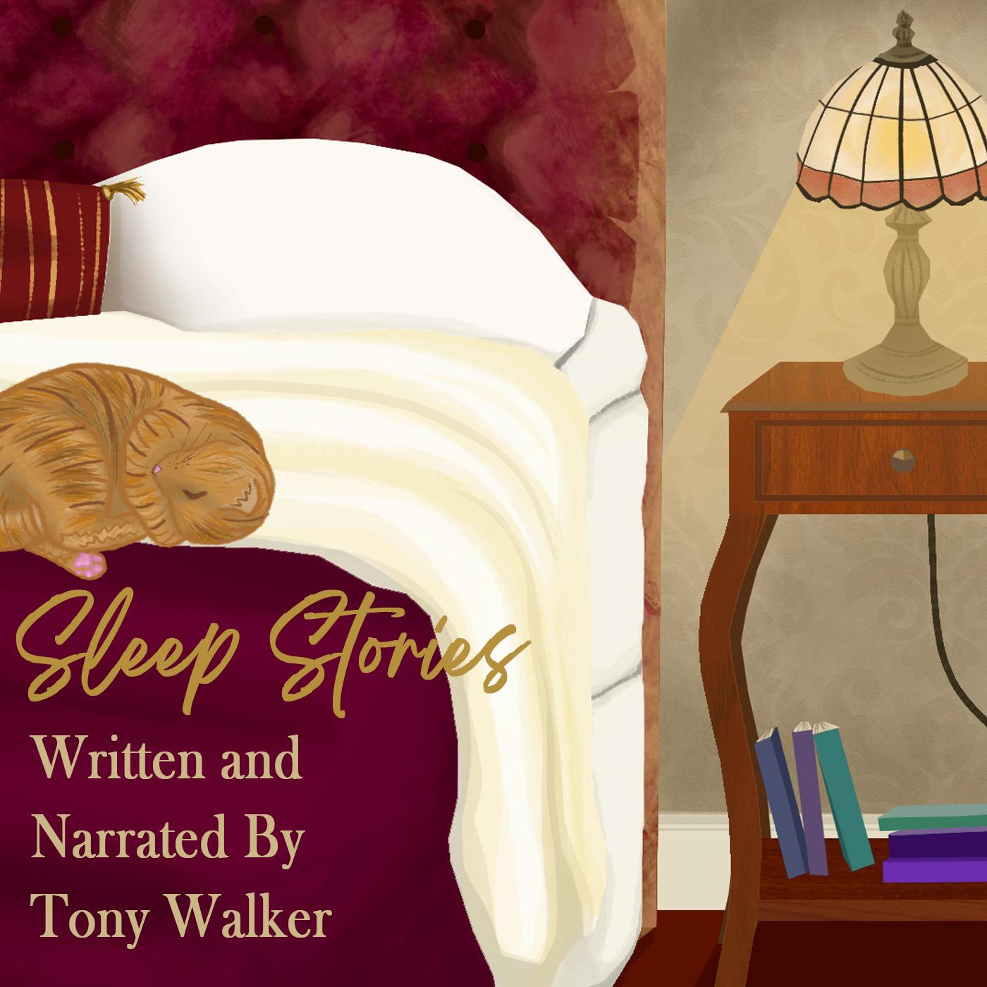 Sleep Stories by Tony Walker