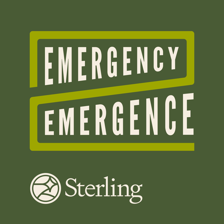 Emergence to Emergence